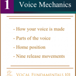 Lesson One: Voice Mechanics